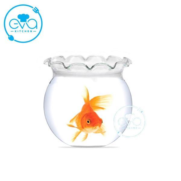Hồ Cá Bể Cá Có Miệng Bèo Thuỷ Tinh Mini B9 6 x 7 Cm Tặng Kèm Sỏi Và Rong Trang Trí