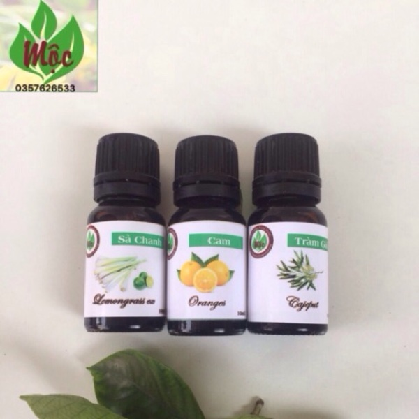Combo Tinh Dầu 3 Mùi Sả Chanh,Cam Ngọt,Tràm Gió (10Ml) giá rẻ