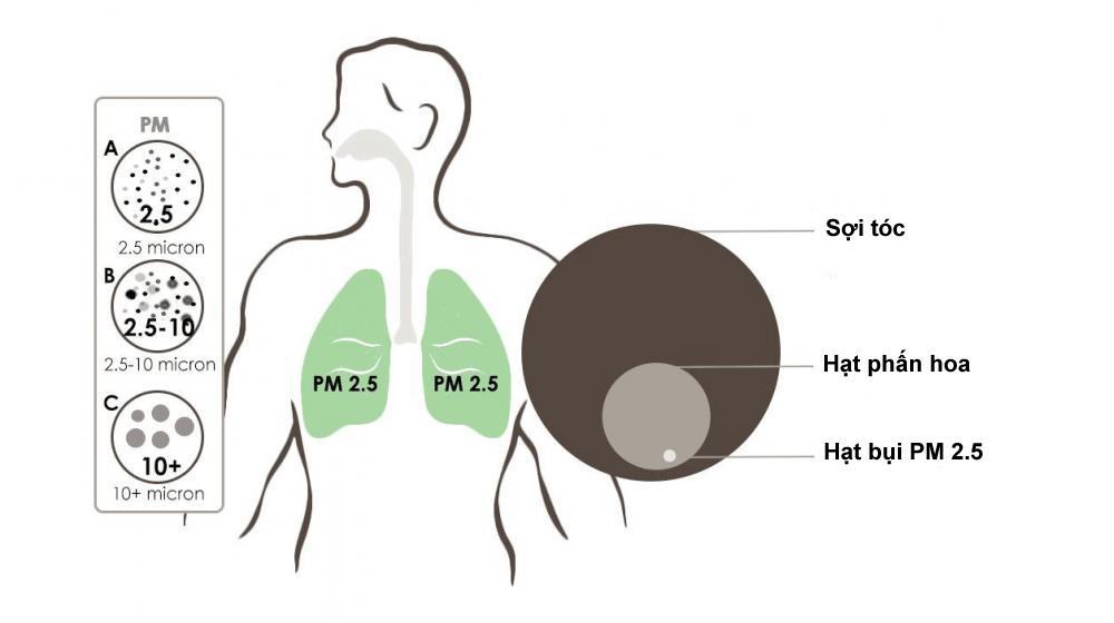 Combo 5 Khẩu trang Honeywell (USA) - H801 chống khói bụi nano PM 2.5 và hoá chất, virus (NEW)