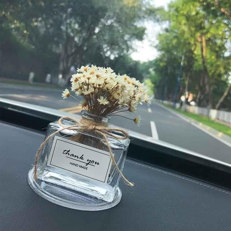 Set hoa cúc bất tử trang trí taplo xe hơi cao cấp chính hãng
