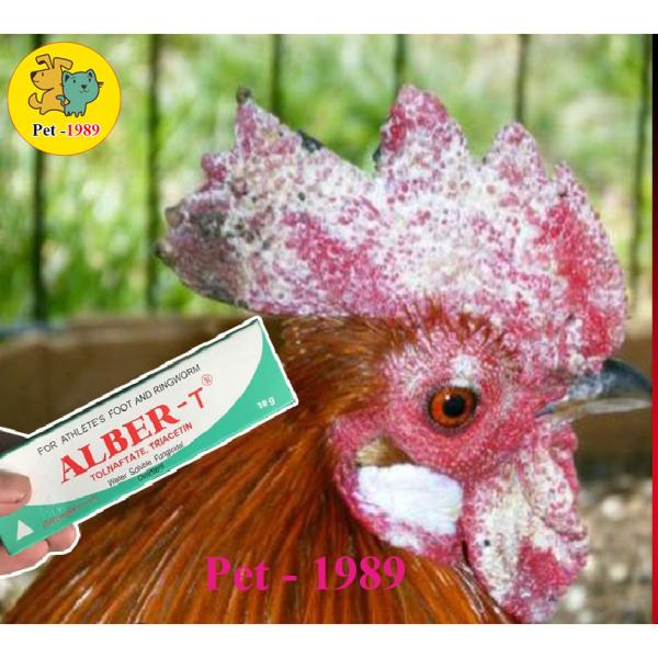 Trị nấm gà, mốc gà chọi và chim, thuốc lác gà đá ALBER-T dạng tuýp bôi 10gr MADEIN THAILAND Pet-1989