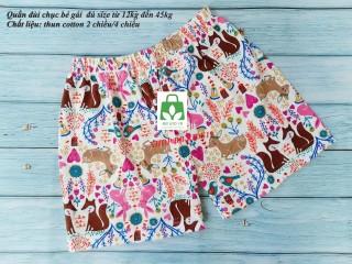 Quần đùi chục bé gái size đại đến 45kg-set 5 quần-vải xuất xịn đẹp loại 1 thumbnail