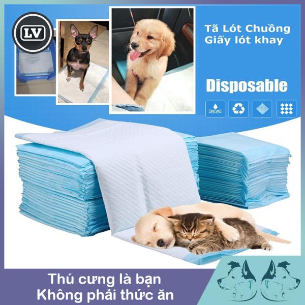 Tấm lót thấm hút nước tiểu, ổ đẻ cho chó mèo lớn. Tấm lót vệ sinh cho thú cưng PAD PET TRAINNING Miếng lẻ  Phụ kiện Long Vũ