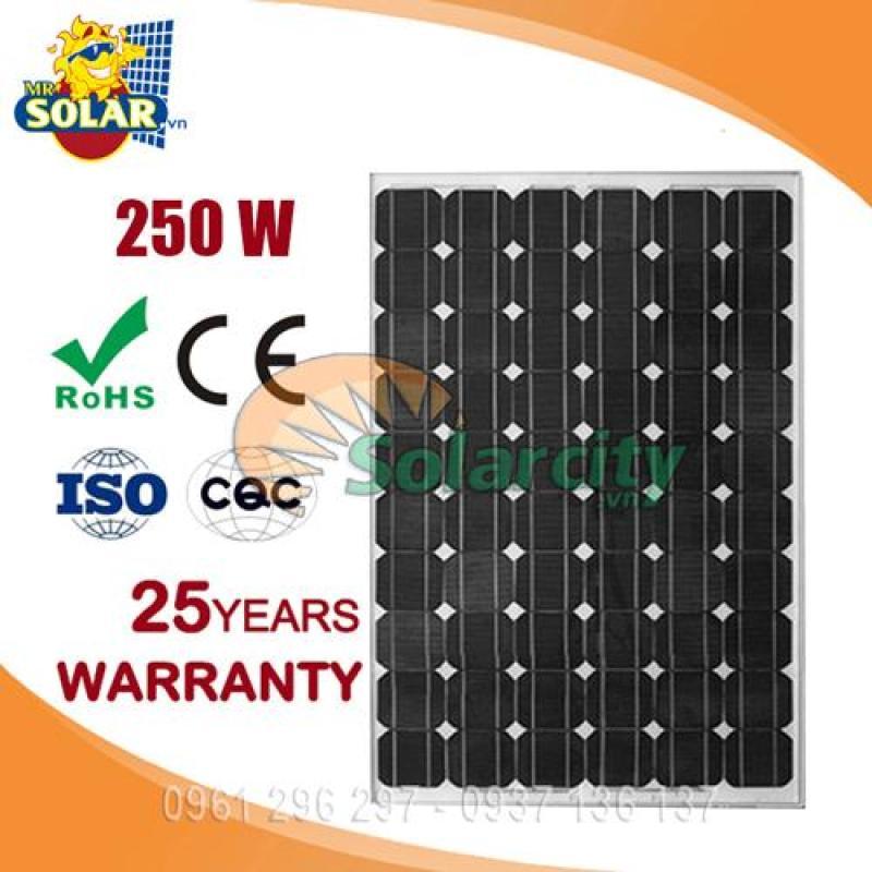 Pin năng lượng mặt trời 250w mono solarcity