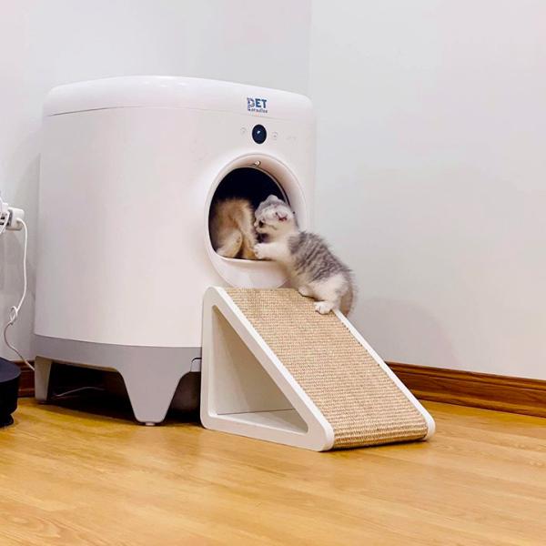 Bậc Thang máy Petkit Pura X kiêm bàn cáo móng cho mèo - Phụ kiện thú cưng Hà Nội