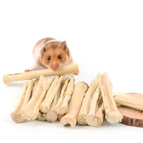 GOIDF Răng Chinchilla Chuột Hamster Làm Sạch Răng Điều Trị Thỏ, Vật Nuôi Đồ Ăn Nhẹ Cành Cây Đồ Chơi Nhai Bằng Tre Ngọt Ngào