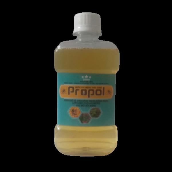 Chiết xuất từ thảo dược thiên nhiên không gây hại cho cơ thể, phù hợp với mọi độ tuổi - Nước súc miệng thảo dược PROPOL(Chai 250ml) giá rẻ