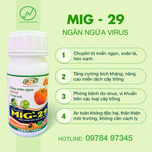 Chuyên trị xoắn ngọn, xoăn lá, héo xanh – MIG 29 250ml