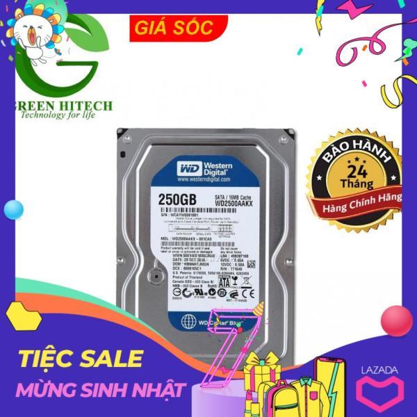Bảng giá Ổ cứng gắn trong HDD WD Blue 250GB - Hàng Chính Hãng - BH 2 năm - 1 đổi 1 Phong Vũ