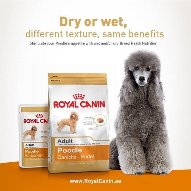 Thức Ăn Hạt Khô Royal Canin Dành Cho Chó Poodle
