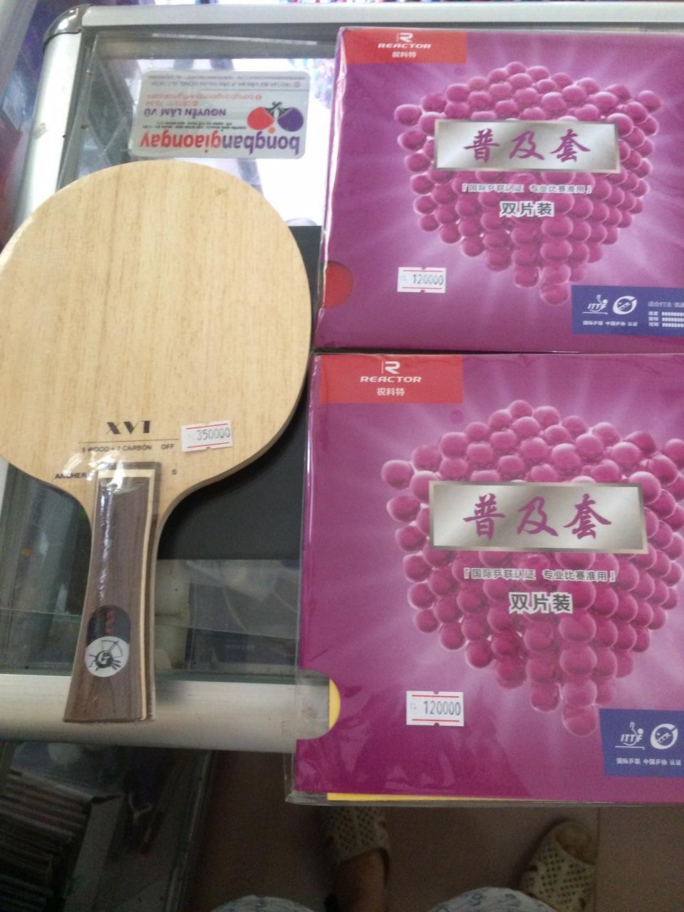 Bảng giá combo vợt bóng bàn cho người mới chơi