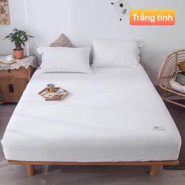 Bộ Chăn Ga Và Vỏ Gốiset 4 Món Cotton Tc Hỗ Trợ Bo Chun