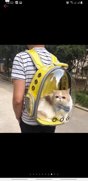 Balo phi hành gia cho chó mèo trong suốt