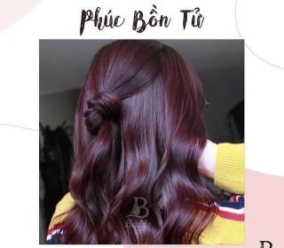 (Nhuộm Collagen Siêu Dưỡng Màu Tím Phúc Bồn Tử) Kem nhuộm tóc tại nhà Không mùi, màu chuẩn, bóng đẹp tự nhiên thumbnail