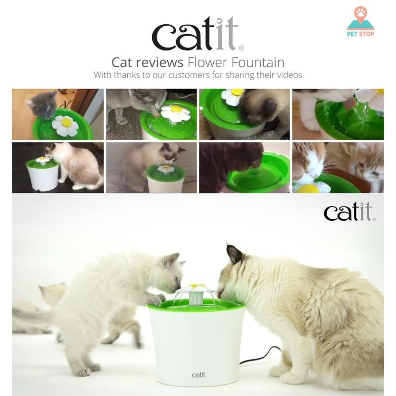 Máy lọc nước vòi hoa Catit cho mèo