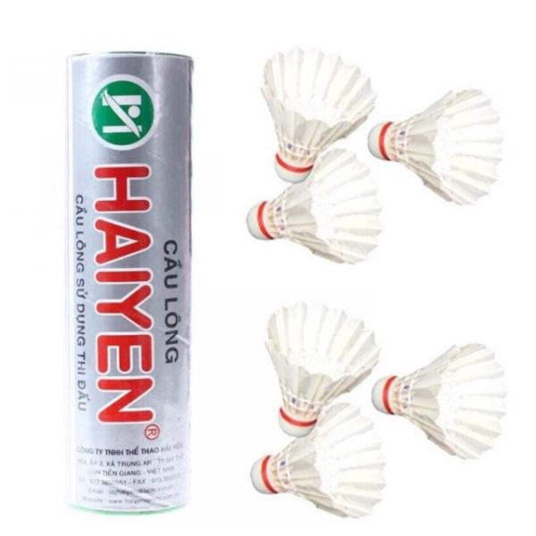 Ống cầu lông Hải Yến thị trường, sản phẩm tốt với chất lượng và độ bền cao, cam kết giống y như hình