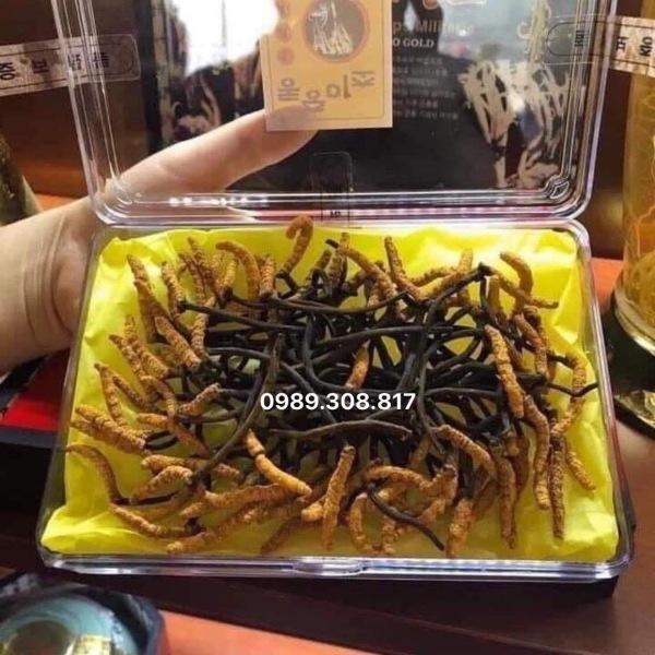[Lấy mã giảm thêm 30%]Đông Trùng Hạ Thảo nguyên con sấy khô Hàn Quốc hộp 45g ( 50-60con)