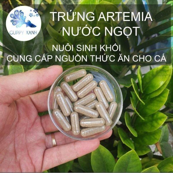 Artemia nước ngọt - Dạng viên nọng - artemia nuôi sinh khối