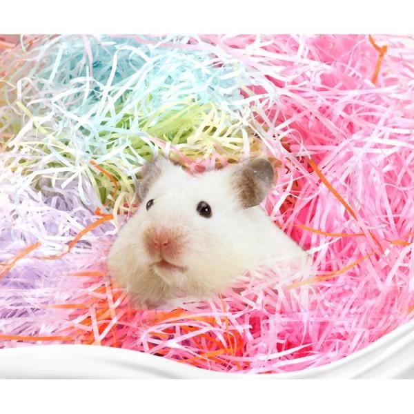 Giấy Màu Lót Chuồng Lót Ổ Hamster 100G