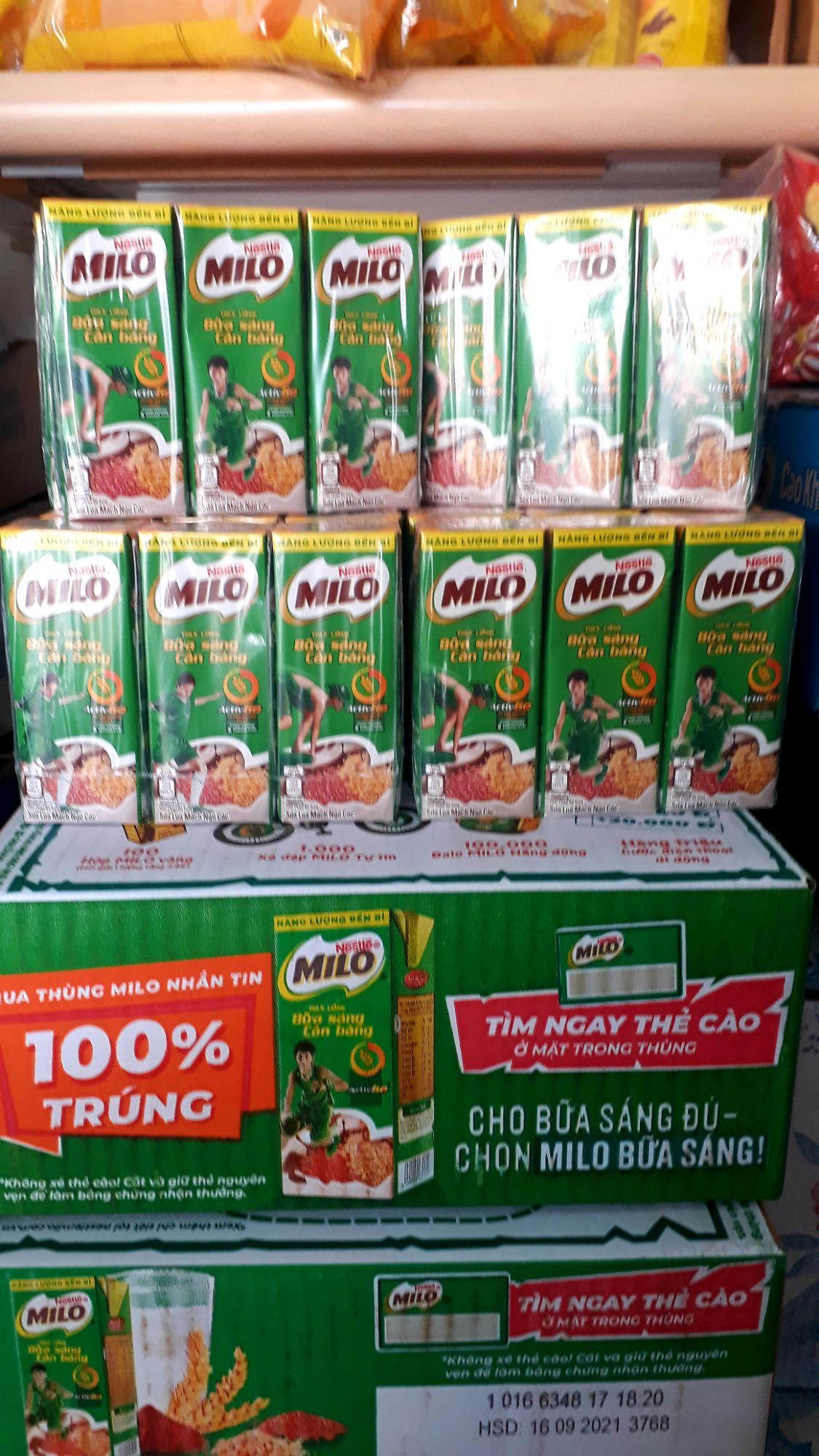 Sữa Milo Thức uống ngũ cốc lúa mạch 180ml