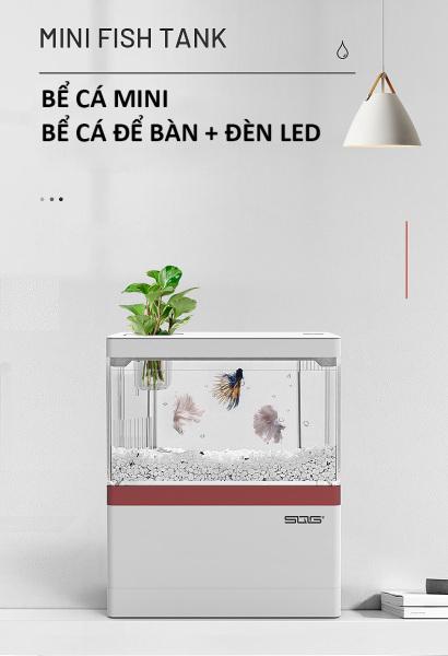 Bể cá mini để bàn Bể cá thủy sinh mini 05