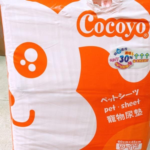 1 miếng tả Cocoyo size 45*60