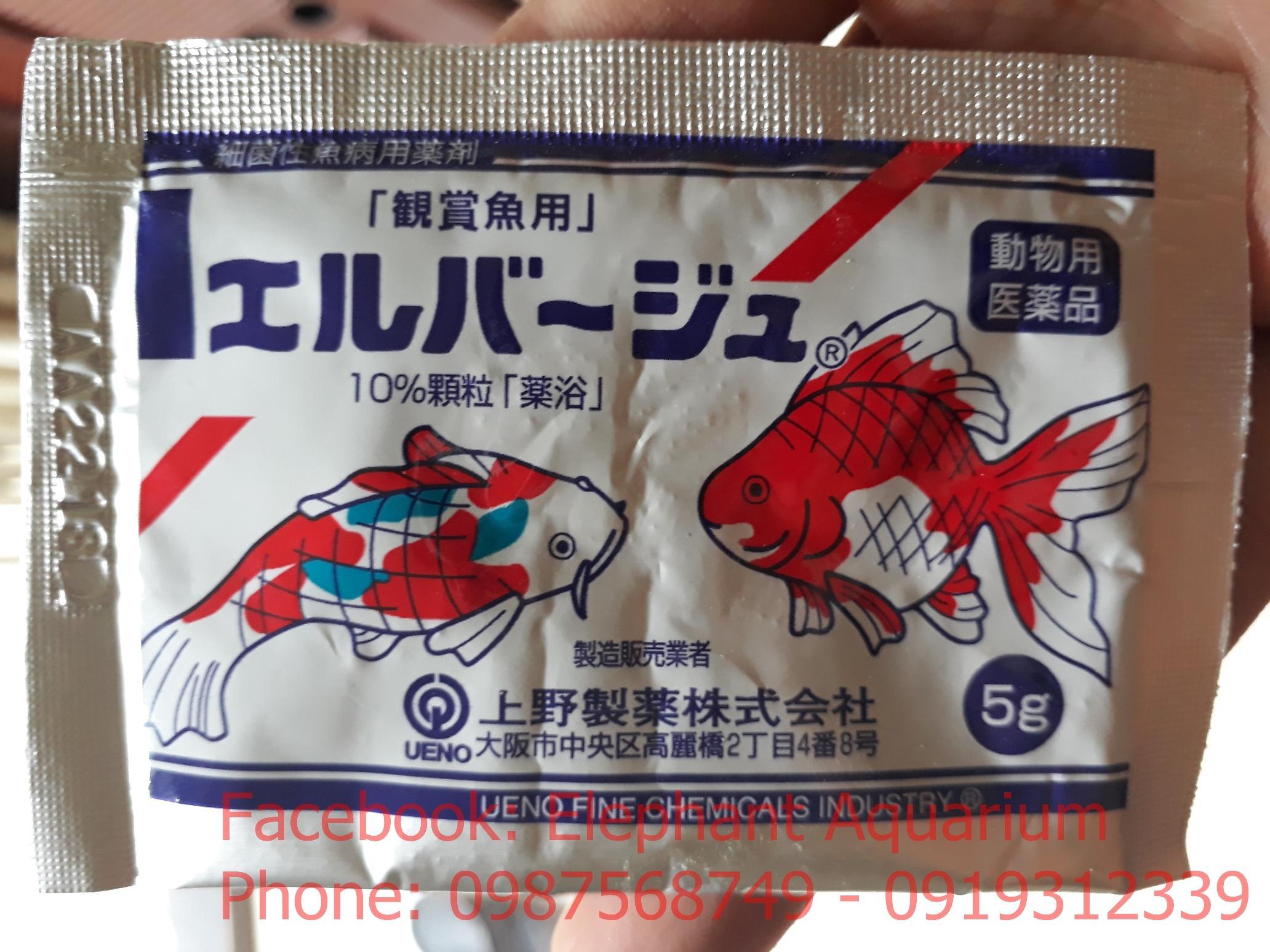 Tetra Nhật trị bệnh cho cá (gói 5g)