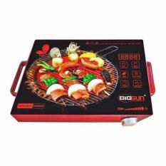 Mua Bếp Hồng Ngoại Bigsun Bif 4Th Mới