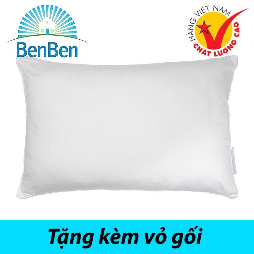 [HCM]Gối ngủ (50x70cm) 100% bông gòn nguyên sinh ép chân không + tặng kèm vỏ gối cùng size hàng VN cao cấp.