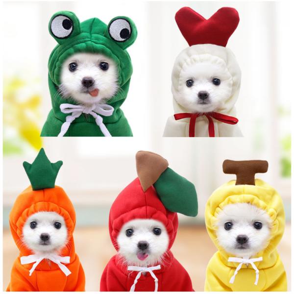 Một bộ đồ hóa trang hình trái cây dễ thương dành cho thú cưng thời trang thu đông