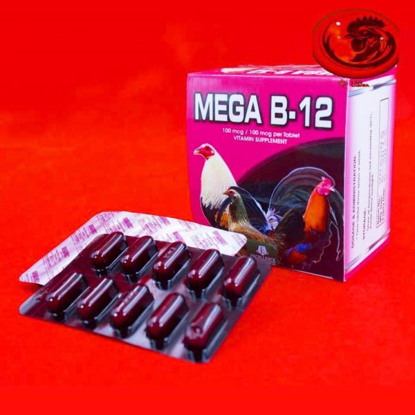B12 - MEGA dinh dưỡng dành cho gà đá 1 hộp 10 vỉ