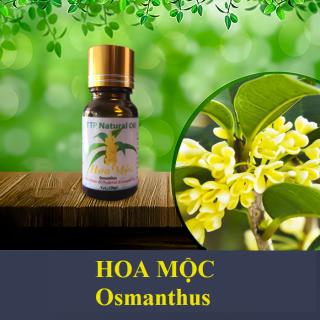Tinh dầu Hoa Mộc Osmanthus - 10ml thumbnail