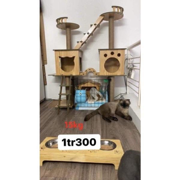 (CÓ SẴN) Cây mèo (cat tree/trụ cào móng/nhà cây) bằng gỗ chất lượng cao, bền