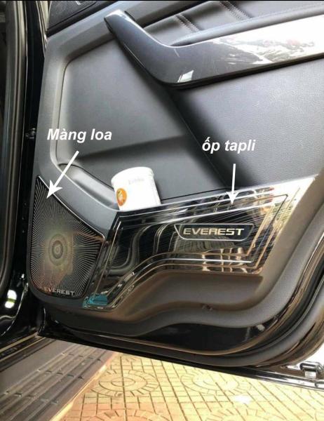 Ốp Tapli +Màng Loa Cửa Xe Ford Everest 2019 2020 2021 Mẫu Titan tặng kèm keo dính thêm giúp chống xước làm đẹp nội thất xe