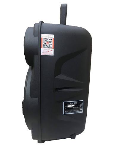 Loa kẹo kéo karaoke bluetooth Temeisheng A8-10