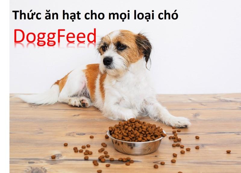 (Gói chiết) DoggFeed  Hương vị Thịt bò Thức ăn hạt cho mọi loại chó
