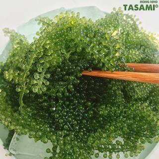 [TẶNG Sốt Mè Rang] Rong Nho tách nước TASAMI gói 35g Mẹ Bầu dùng được Đạt chuẩn FDA và HACCP 4