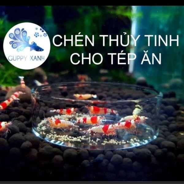 Chén Thuỷ Tinh Để Thức Ăn Cho Tép | Chén Tép Thuỷ Tinh