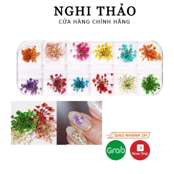 Hoa khô nail trang trí móng cánh nhỏ 12 màu giá rẻ
