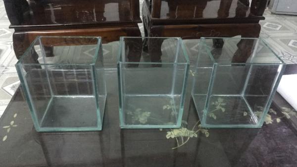 3 bể cá mini 13.5x12 x 16 cao nuôi cá