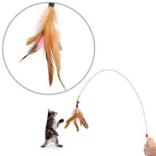 Đồ chơi cần câu mèo dây thép