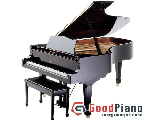 Đàn Piano Grand Yamaha C7B