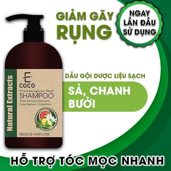 Dầu gội dược liệu trị rụng tóc Ecoco với chiết xuất sả chanh, bưởi giá rẻ