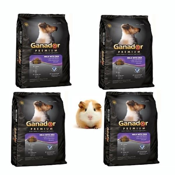 COMBO 4 túi thức ăn hạt Chó con Ganador Puppy-400g
