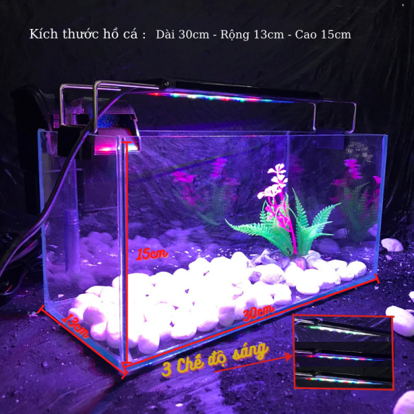 Bể cá mini để bàn COMBO ĐẦY ĐỦ Hồ Lọc Đèn kèm phụ kiện