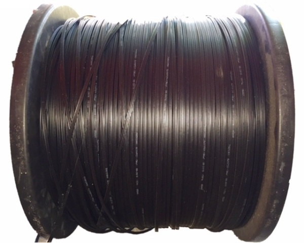 Cable quang 1FO buộc chặt SAM - cuộn 1000m