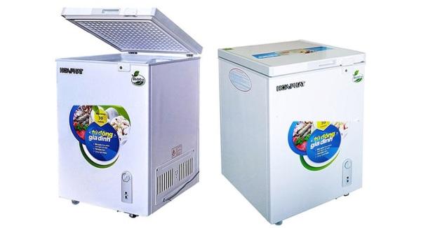 Tủ đông Hòa Phát HCF 106S1N 100l