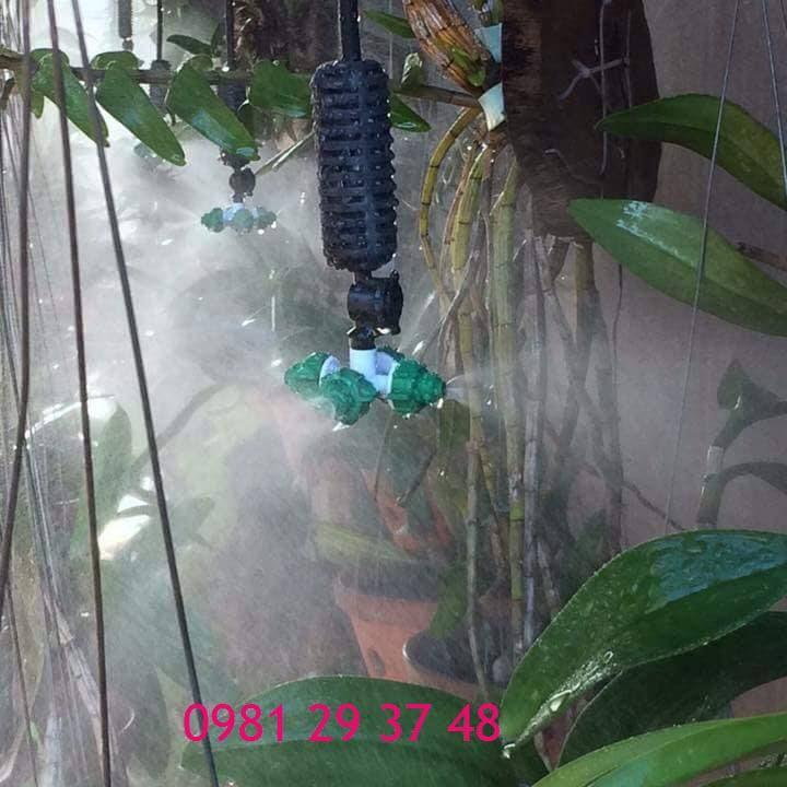 Bộ tưới lan tự động 10m2
