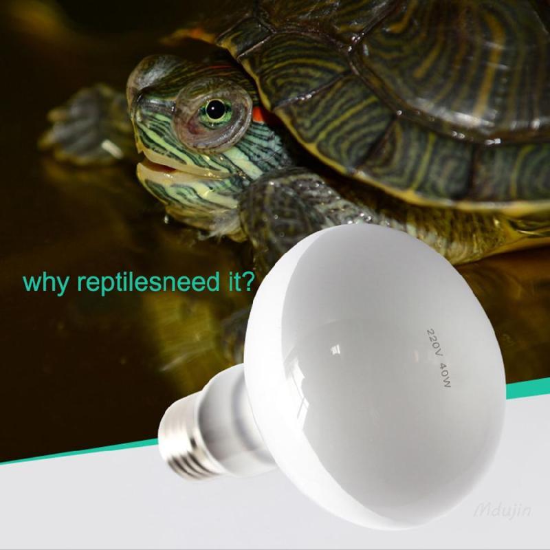 220 V bò sát UVA đèn sưởi rùa hộp sưởi ấm đèn rùa thằn lằn đèn đồn 【Free Shipping】