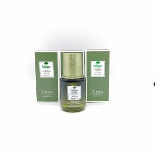 [ GIẢM GIÁ CỰC SỐC ] Tinh Dầu Dưỡng Tóc Toco collagen (Kích Thích Mọc Tóc, Dưỡng tóc ,Thành Phần Thiên Nhiên) - 60ML thumbnail
